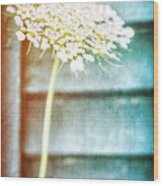 Beautiful Spring Flower Wood Print