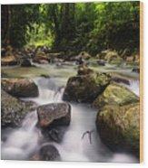 Beautiful Stream In Western Ghats Region Of Karnataka India Wood Print