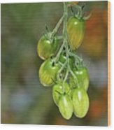 Beautiful Tomatoes Wood Print