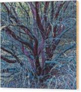 Beautiful Tree Wood Print