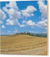 Beautiful Tuscany Landscape With Traditional Farm House And Dram Wood Print