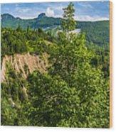 Nature Taking Back Its Place At Vajont Dam Wood Print