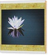 Beautiful Waterlilies Wood Print