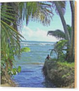 Beautiful Waters Of Puerto Rico Wood Print