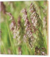 Beautiful Weeds Wood Print