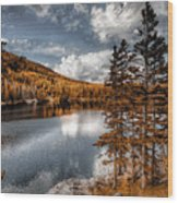 Beautiful Wilderness Wood Print