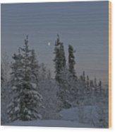 Beautiful Winter Evening Wood Print