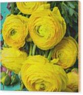 Beautiful Yellow Ranunculus Wood Print