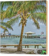 Beautifull Day In Paradise Wood Print