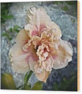 Beauty And The Boulder - Daylily Wood Print