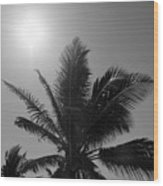 Beauty And The Palms In  Dominican Republic  Wood Print
