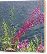 Beauty By Waters Edge Wood Print