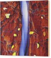 Beauty Divide Wood Print