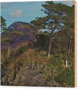 Beauty Found In Letterfrack, Ireland Wood Print
