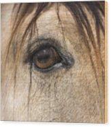 Beauty In The Eye Wood Print