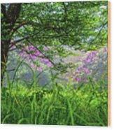 Beauty In The Fog Wood Print