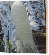 Beauty In White Wood Print