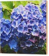 Beauty Of Blue. Wood Print