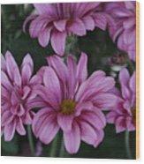 Beauty Of Pink Wood Print