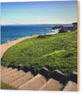 Beauty Of The Pacific Grove Shoreline Two Wood Print