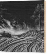 Beauty Of The Southwest Wood Print