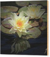 Beauty Of The Water Lily Wood Print