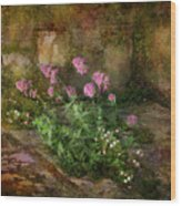 Beauty On An Old Stone Wall Wood Print