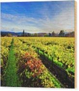 Beauty Over The Vineyard Wood Print