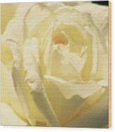 Beauty Wood Print