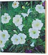 Beauyiful Petunias Wood Print