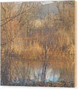 Beaver Dam At Sunset In Colorado            Wood Print