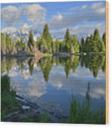 Beaver Dam Reflection In Grand Teton Np Wood Print