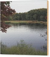 Beaver Lake With A Gentle Breeze Wood Print