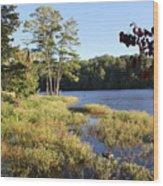 Beaver Lake Scenic View Wood Print
