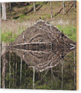 Beaver Lodge Reflection Wood Print