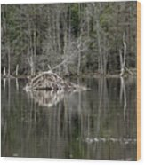 Beaver Lodge Reflections Wood Print