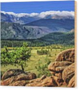 Beaver Meadows In Rocky Mountain National Park Wood Print