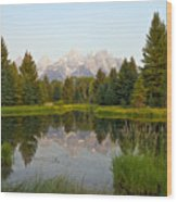 Beaver Pond At Schwabacher Landing Wood Print
