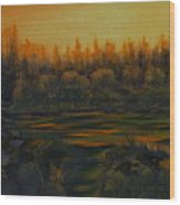 Beaver Pond At Sunset Wood Print