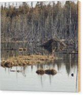 Beaver Residence Wood Print