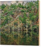 Beaver's Bend Overlook Wood Print