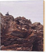 Beavertail Rock Formations Wood Print