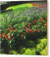 Bed Of Flowers Wood Print