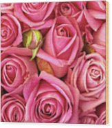 Bed Of Roses Wood Print by Carlos Caetano