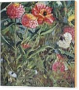 Bed Of Zinnias Wood Print
