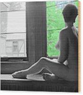 Bedroom Window Wood Print by Jan W Faul