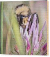 Bee 3 Wood Print