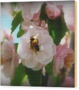 Bee Blossoms Wood Print