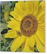 Bee-dazzled Wood Print