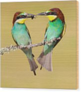 Bee-eater Valentine Heart Wood Print